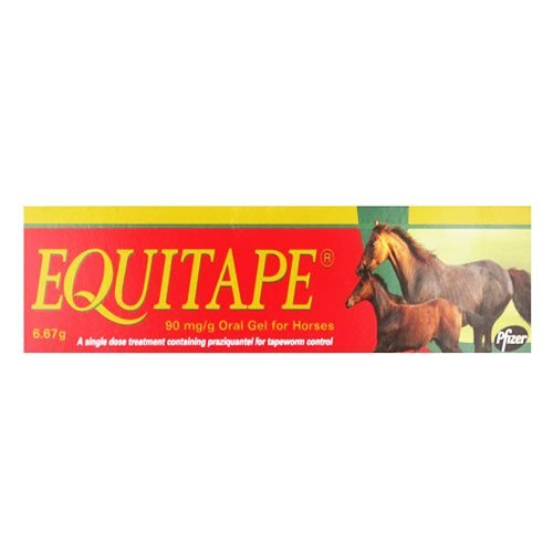 Equitape Wormer Paste 6.67 gm