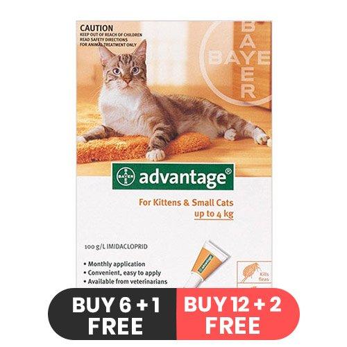 Advantage Kittens & Small Cats 1-10lbs