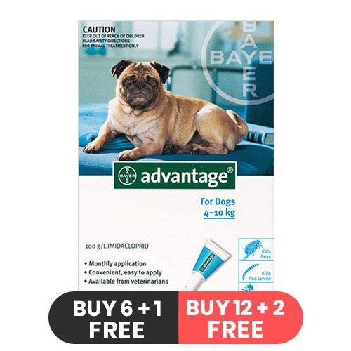 Advantage Medium Dogs 11-20lbs (Aqua)