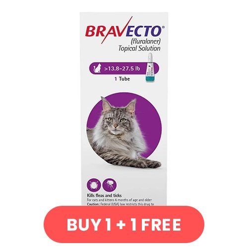 Bravecto Spot On for Large Cats 13.8 lbs - 27.5 lbs