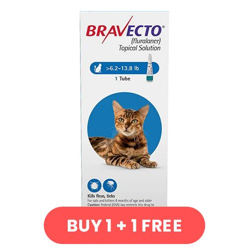 Bravecto Spot On for Medium Cats 6.2 lbs - 13.8 lbs