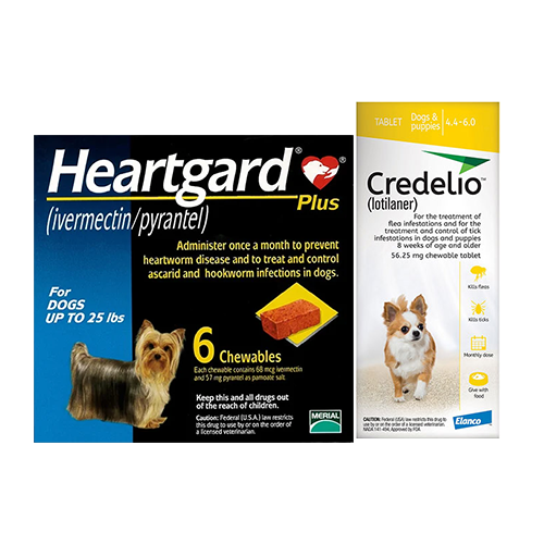 HeartgardPlus-Credelio-Dog