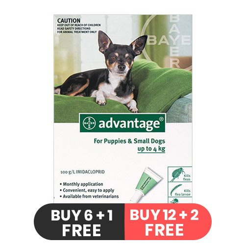 advantage-small-dogs-pups-1-10lbs-green-of