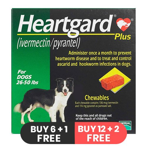 Heartgard Plus Chewables for Medium Dogs 26-50lbs (Green)
